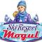 Ski Resort Mogul Icon