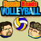 Sports Heads: Volleyball Icon