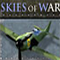 Skies of War Icon