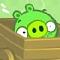 Bad Piggies Icon