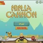 Ninja Cannon Screenshot