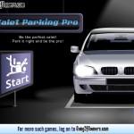Valet Parking Pro Screenshot