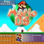 Mario DS Screenshot